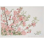 4x6, Still Life, Berkshires, Watercolor