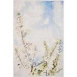 12x18, Still Life, Berkshires, Watercolor
