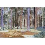 12x18, Landscape, Berkshires, Private Collection, Watercolor